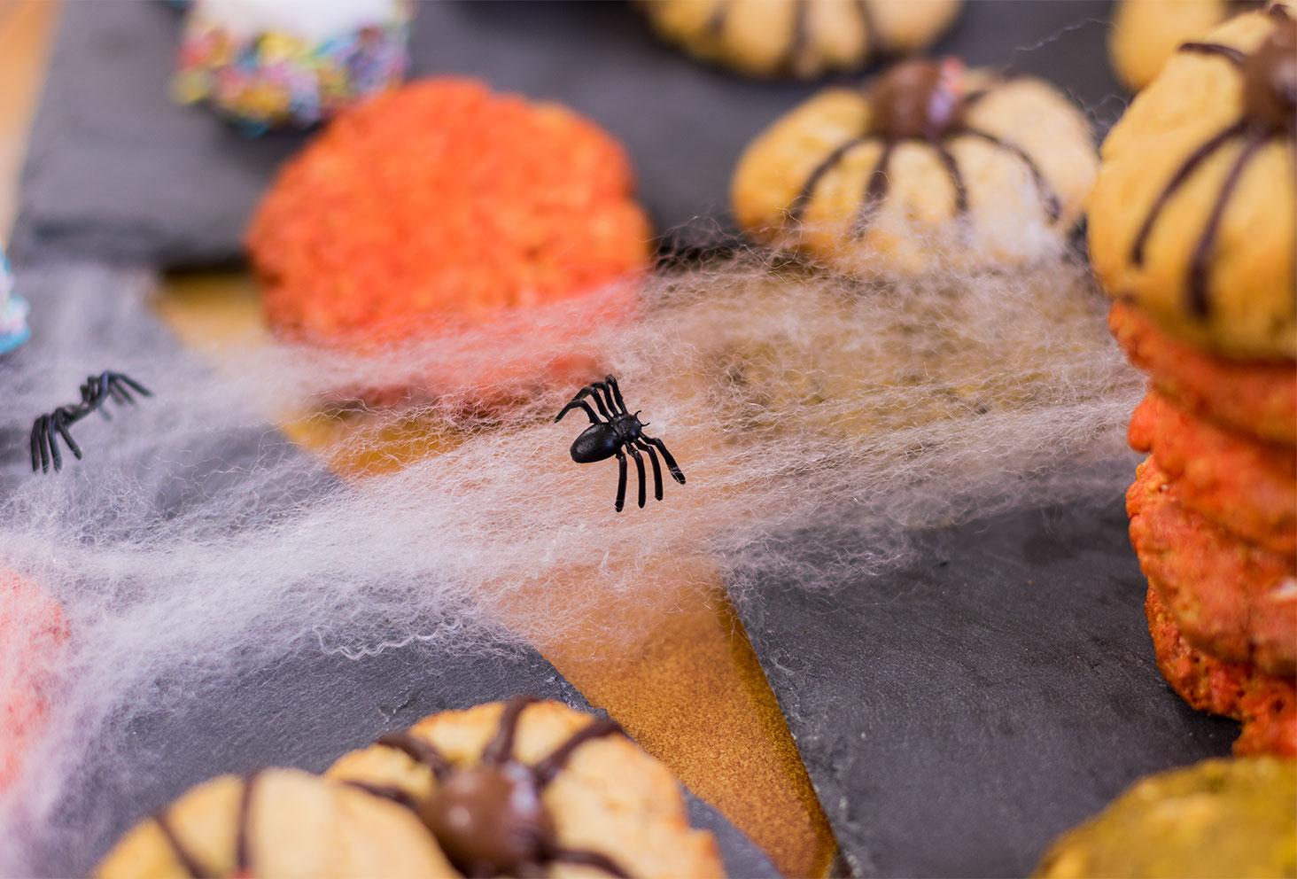 Zoom sur une araignée noir Halloween
