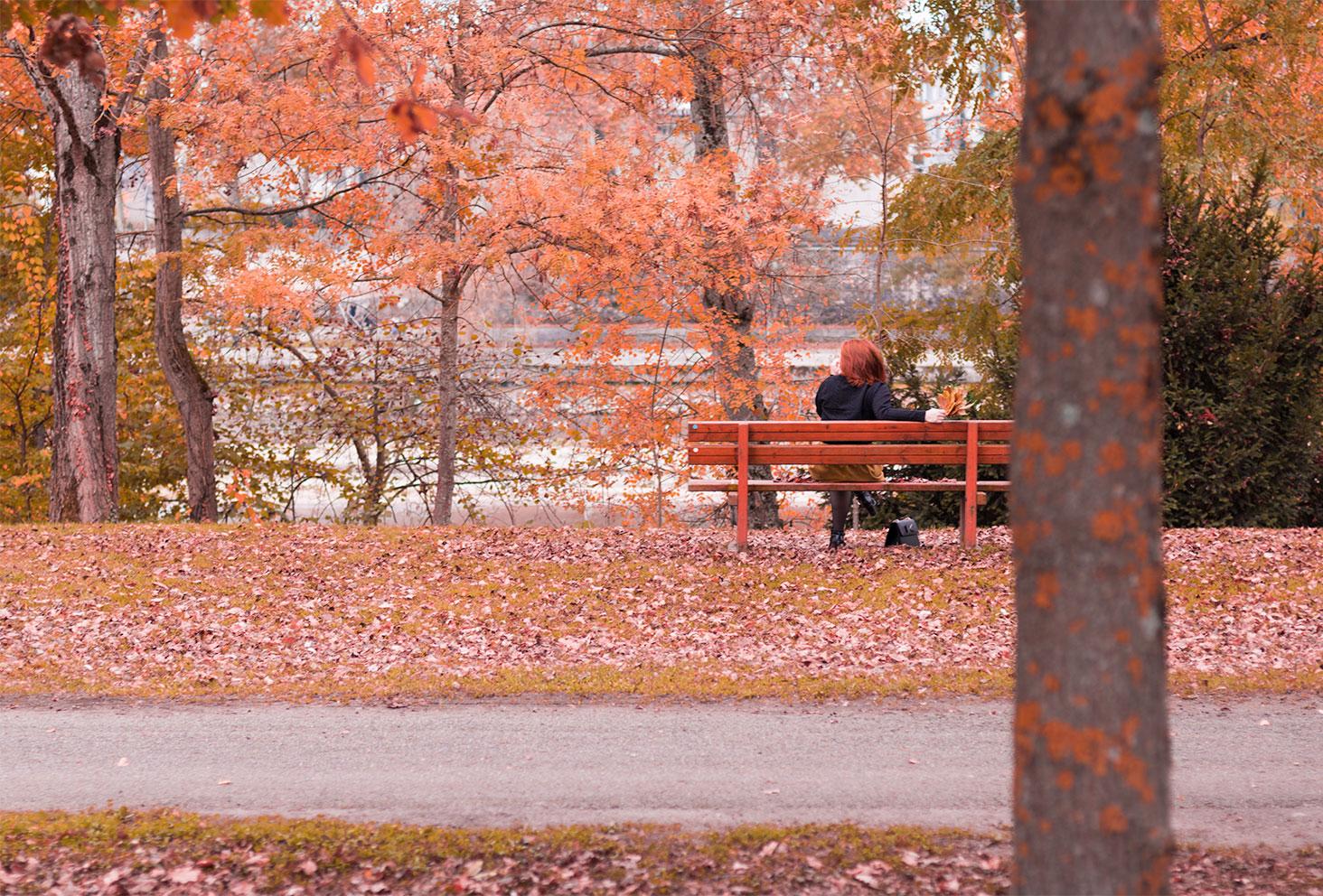 De loin assise sur un banc au milieu des couleurs de l'automne pour le look Modz