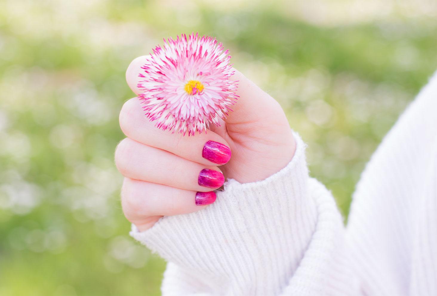 Résultat du nailart dégradé réalisé avec les vernis SO'BiO étic une fleur dégradée rose et blanche dans la main de la même couleur