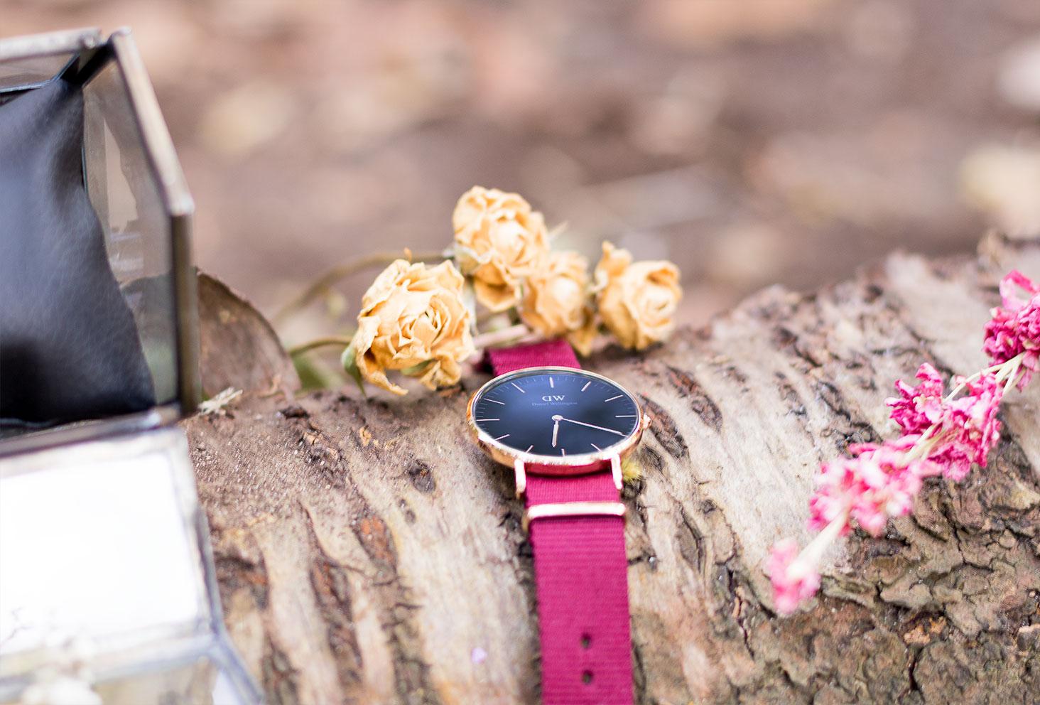 La montre Classic Black Roselyn de Daniel Wellington posée sur une souche d'arbre dans la forêt au milieu des fleurs séchées