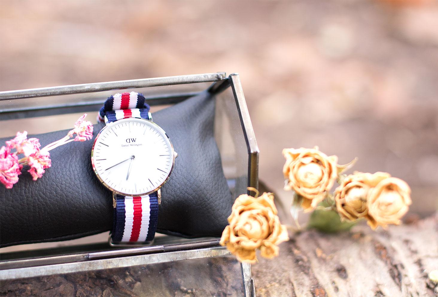 La montre Classic Canterbury de Daniel Wellington sur un coussin noir dans une boîte en verre au milieu des fleurs sèches jaunes et roses