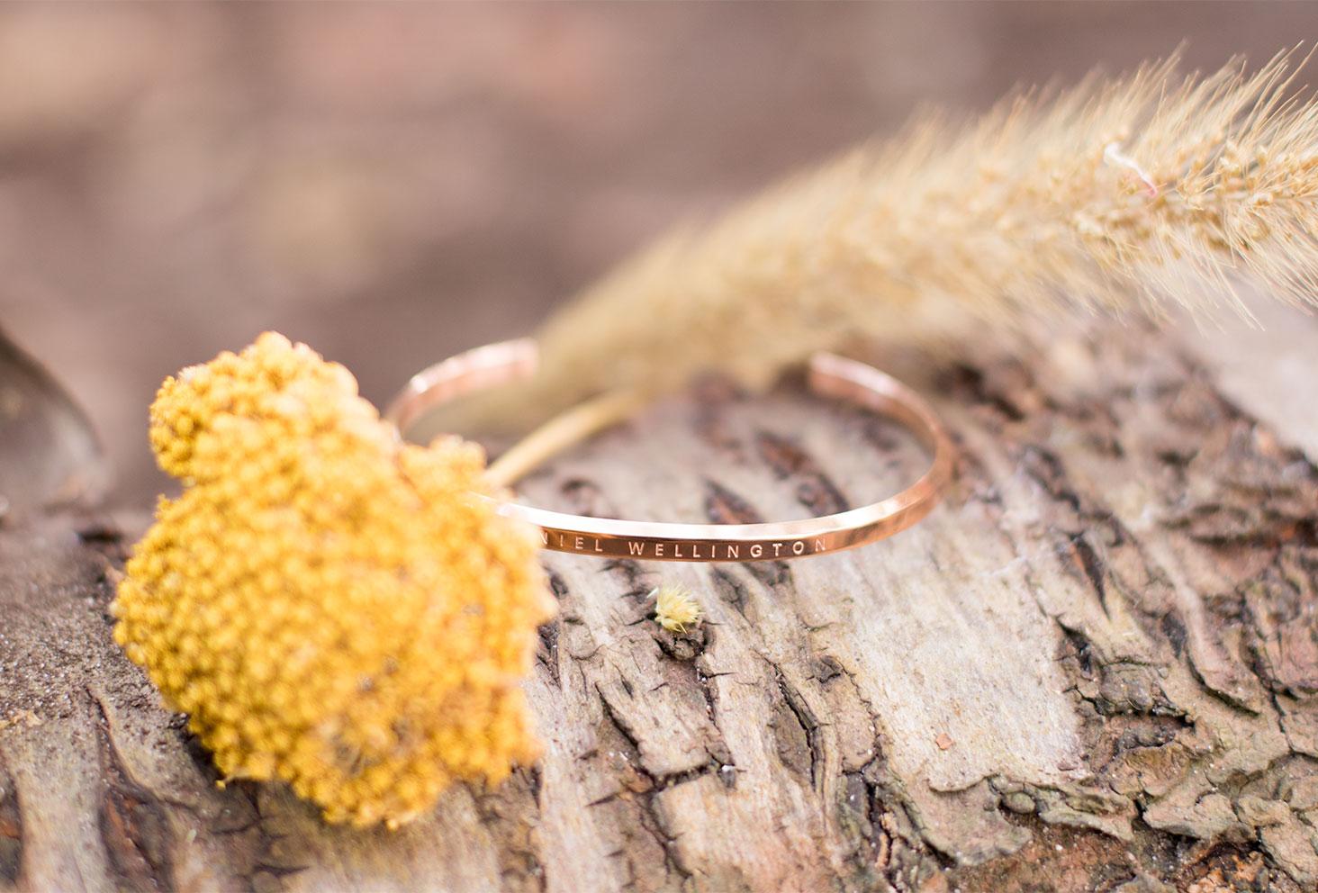 Le jonc Classic Cuff de Daniel Wellington en doré posé sur un tronc d'arbre au milieu de fleurs sèches