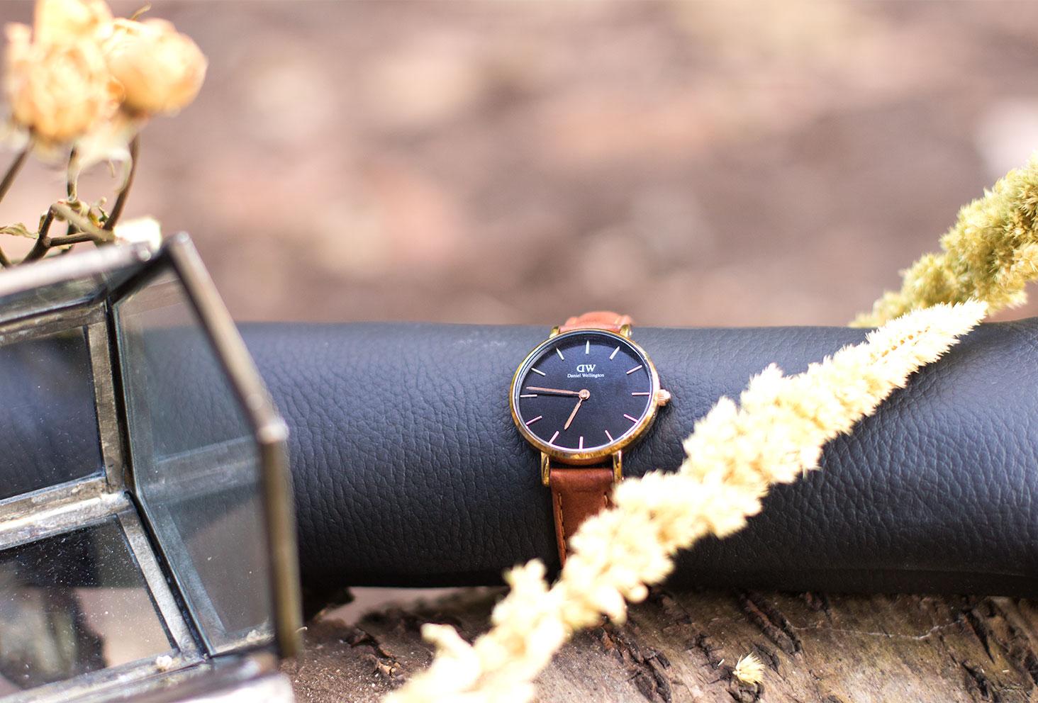 La montre Classic Petite Durham posé sur un coussin noir au milieu de fleurs séchées sur une souche d'arbre dans la forêt