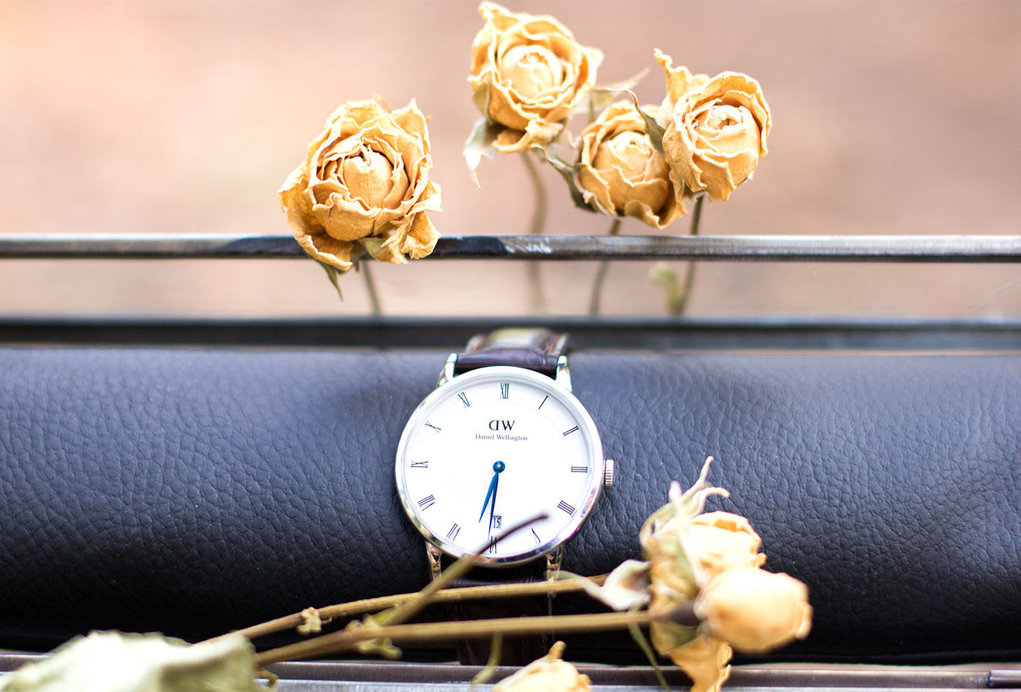 La montre Dapper York de Daniel Wellington posée sur le coussin noir de la boîte de rangement en verre au milieu des roses jaunes séchées