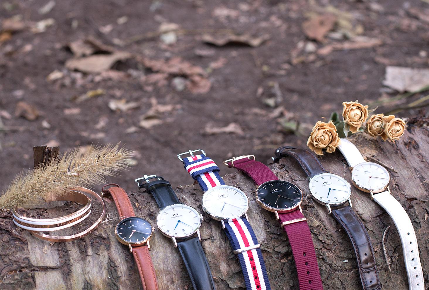Les montres et joncs de Daniel Wellington posés sur une souche d'arbres au milieu de la forêt avec des fleurs séchées
