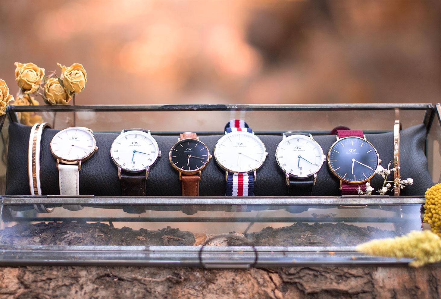 Zoom sur l'ensemble des montres Daniel Wellington autour d'un coussin dans un rangement en verre au milieu de la forêt et des fleurs séchées